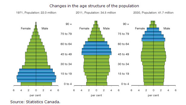 income and population age structure essay