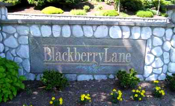 Blackberry Lane 2135 55A V3A 8L6