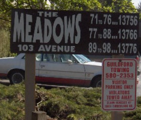 The Meadows 13786 103RD V3T