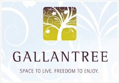 Gallantree 33898 PINE V2S 2P3