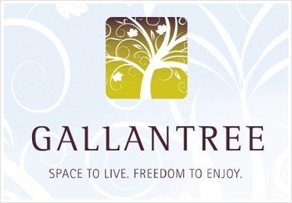 Gallantree 33898 PINE V2S 2P3