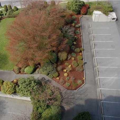 Garden & Parking!