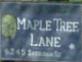 Maple Tree Lane 6245 SHERIDAN V7E 4W5
