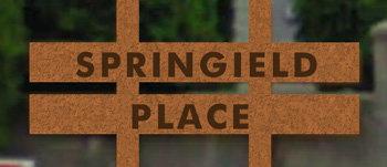 Springfield Place 45090 LUCKAKUCK V2R 3Z5