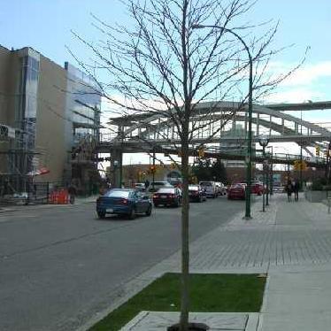 Skybridge to Metrotown Mall!