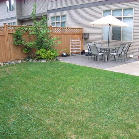 Backyard with patio!