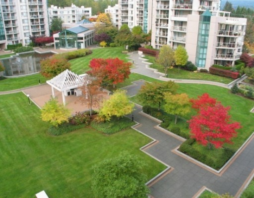 1190 Pipeline Coquitlam BC - Courtyard!