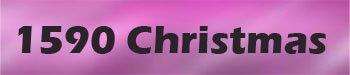 1590 Christmas Ave 1590 Christmas V8P 2X2