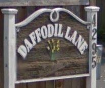 Daffodil Lane 4295 Carey V8Z 4H1