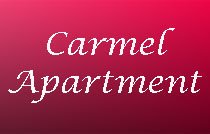 Carmel Apartment 1590 10TH V6J 1Z9
