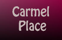 Carmel Place 1959 2ND V6J 1J2