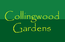 Collingwood Gardens 3506 4TH V6R 1N8