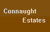 Connaught Estates 639 14TH V5Z 1P7