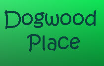 Dogwood Place 750 7TH V5T 4H5