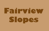 Fairview Slopes 874 6TH V5Z 1A6