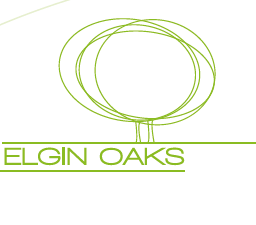 Elgin Oaks 3266 147TH V4P 1Z8