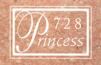 Princess Tower 728 PRINCESS V3M 6S4