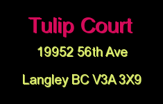Tulip Court 19952 56TH V3A 3X9