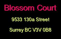 Blossom Court 9533 130A V3V 0B8