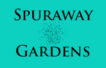 Spuraway Gardens 235 KEITH V7T 1L4