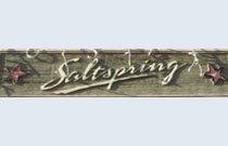 Saltspring 6745 STATION HILL V3N 4Z4
