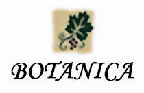 Botanica 7330 SALISBURY V5E 3A3