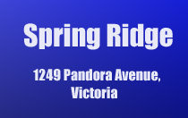 Spring Ridge 1249 Pandora V8V 3R3