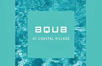 Aqua At Coastal Village 1188 MAIN V8B 0A1
