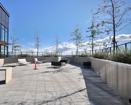 Amenity Roof Deck!