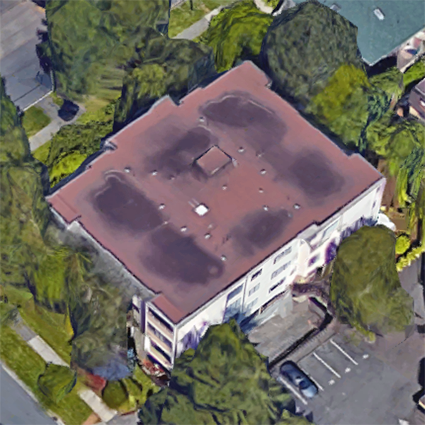 1151 Oscar Street, Victoria, BC!