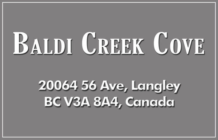 Baldi Creek Cove 20064 56TH V3A 3Y4