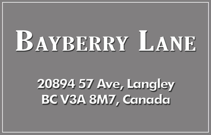 Bayberry Lane 20894 57 V3A 8M7