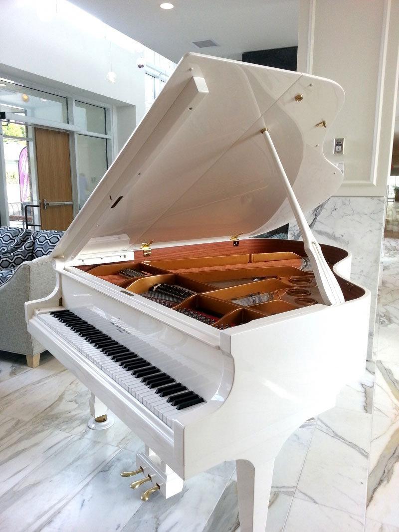 Amenity Piano!
