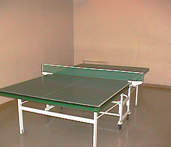 3970 Carrigan Court Pingpong Table!