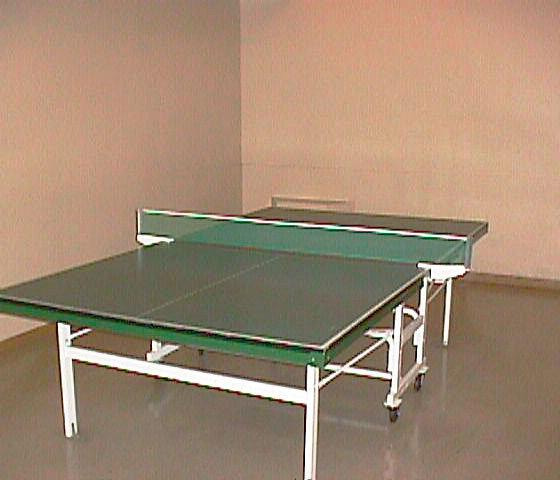 3970 Carrigan Court Pingpong Table!