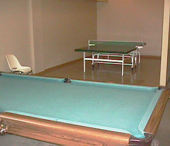 3970 Carrigan Court Pool Table and Pingpong Table!