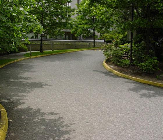 3970 Carrigan Court Driveway!