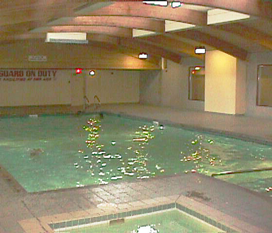 3970 Carrigan Court Swimming Pool!