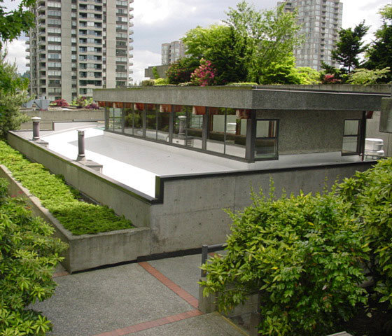 3980 Carrigan Burnaby Swimming Pool Roof!