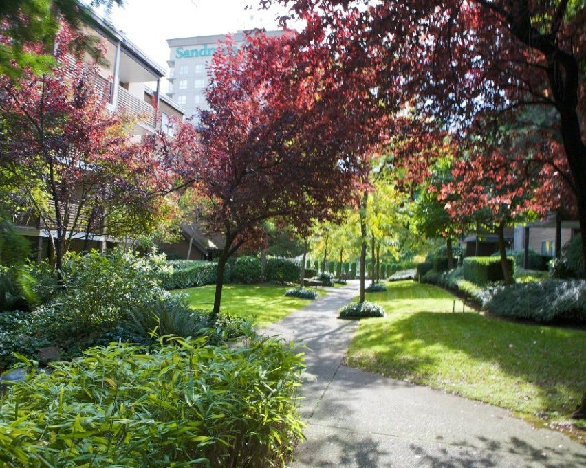 Lincoln Hill Gardens!