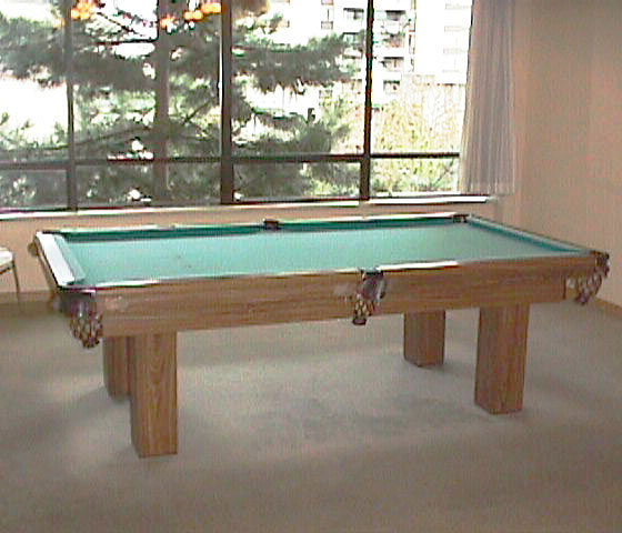 3970 Carrigan Court Pool Table!