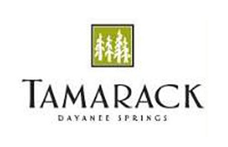 Tamarack 3156 DAYANEE SPRINGS V3E 0B7