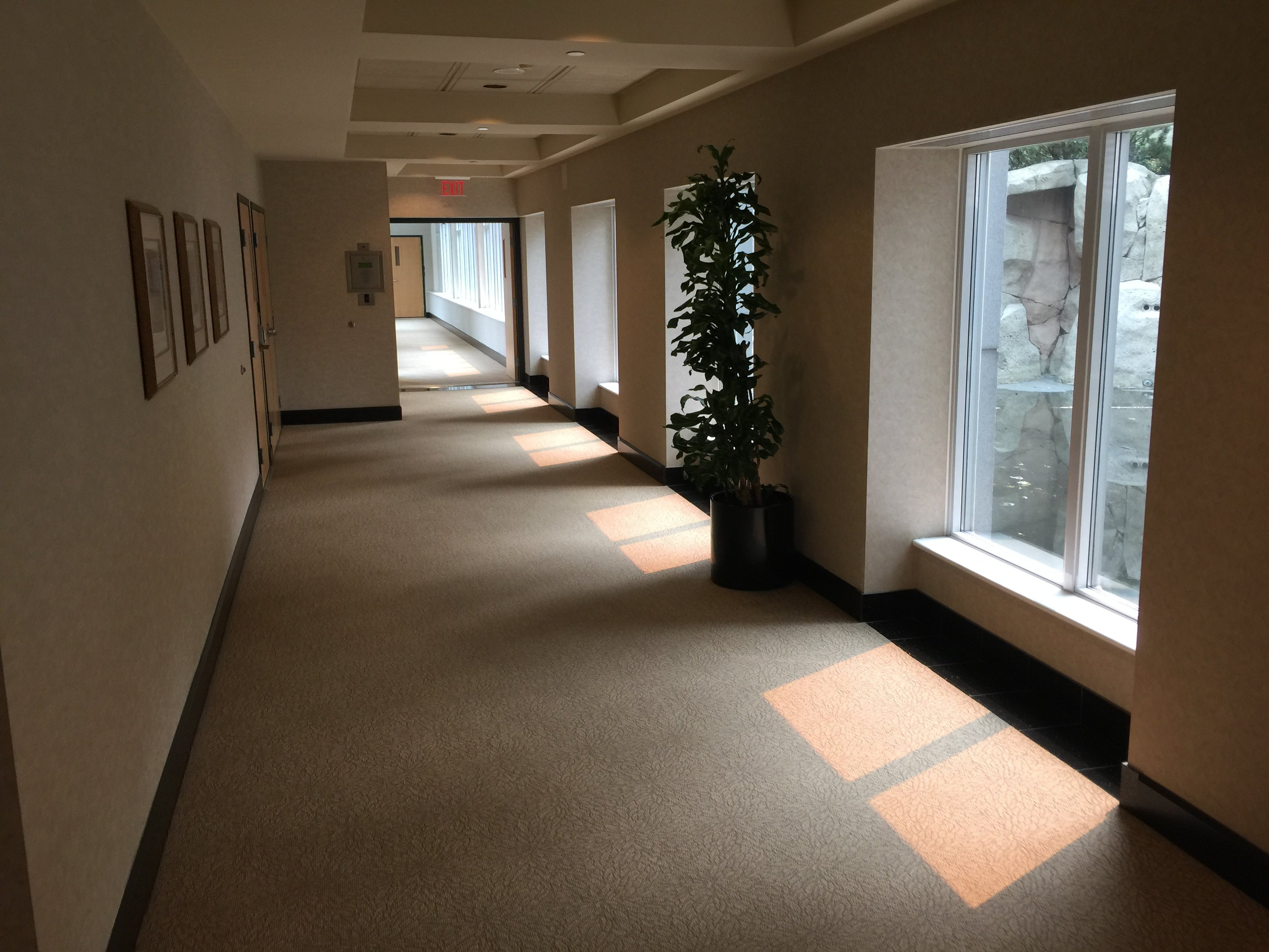 Avila Typical Hallway!