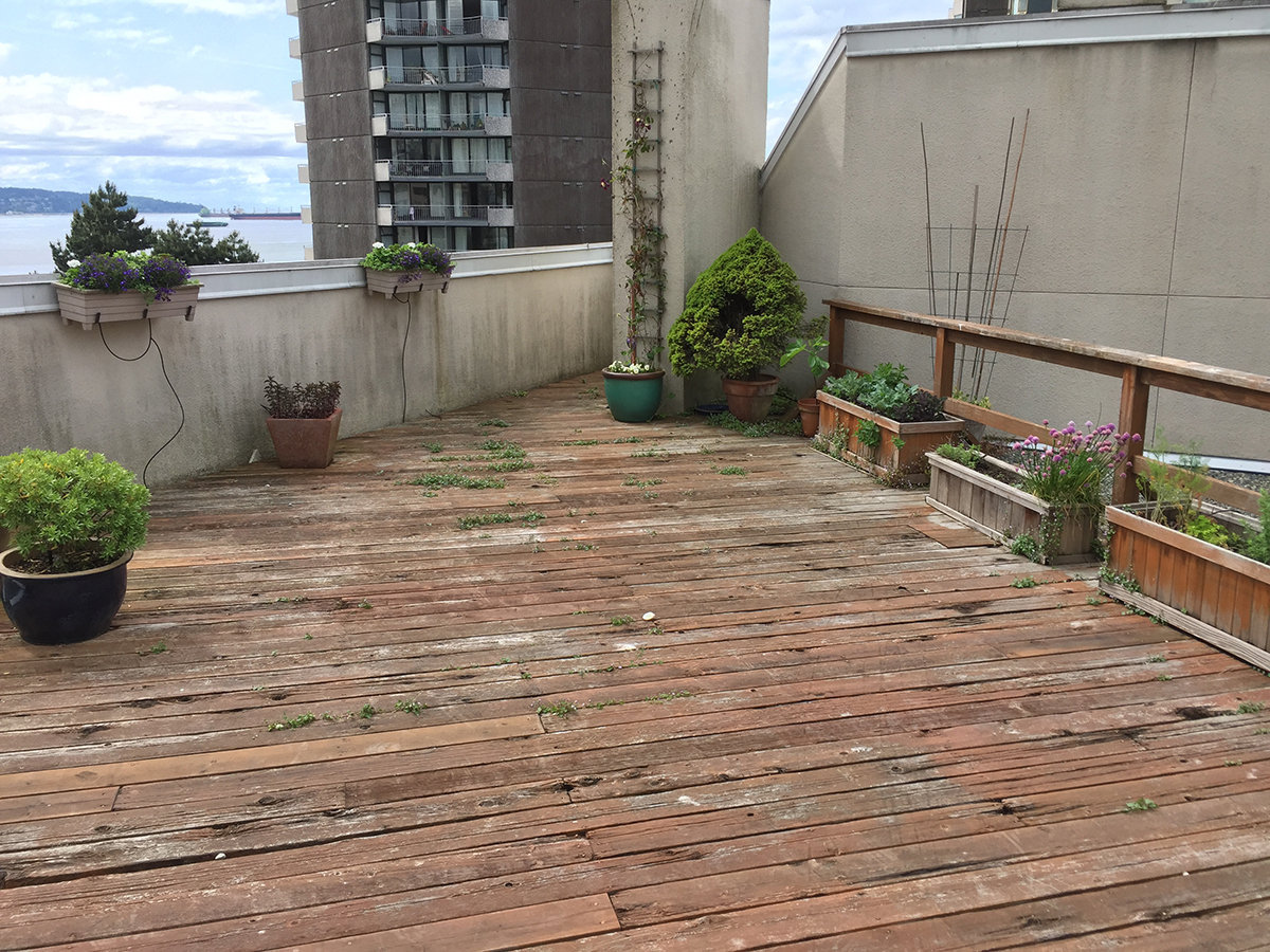 1558 Harwood Roof Deck!