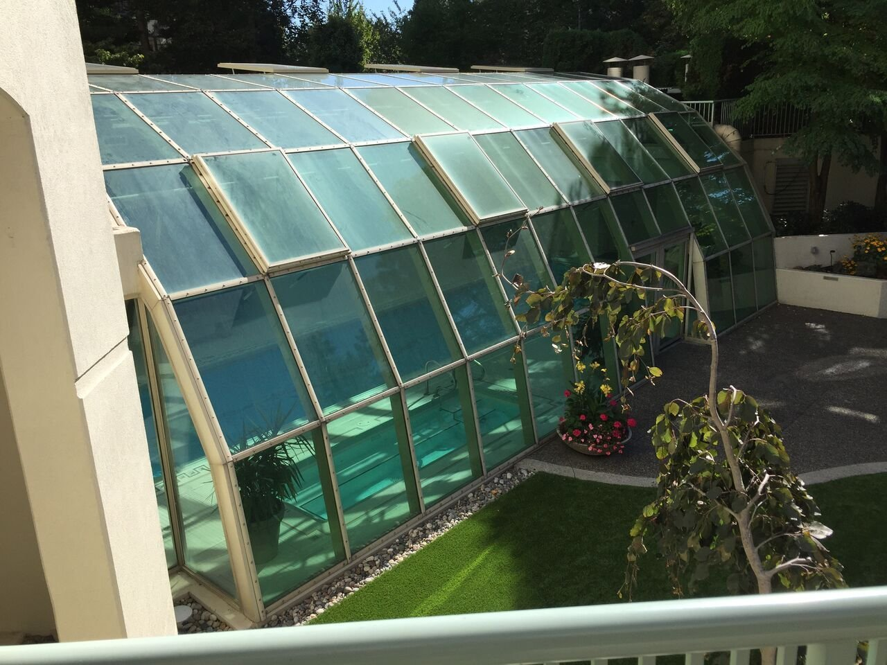 Wimbledon Covered Swimming Pool!