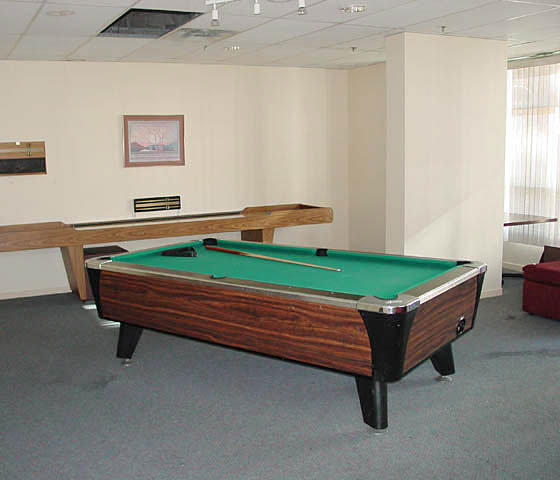1188 Howe Amenity Pool Room!