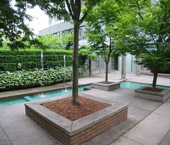 1188 Howe Courtyard!