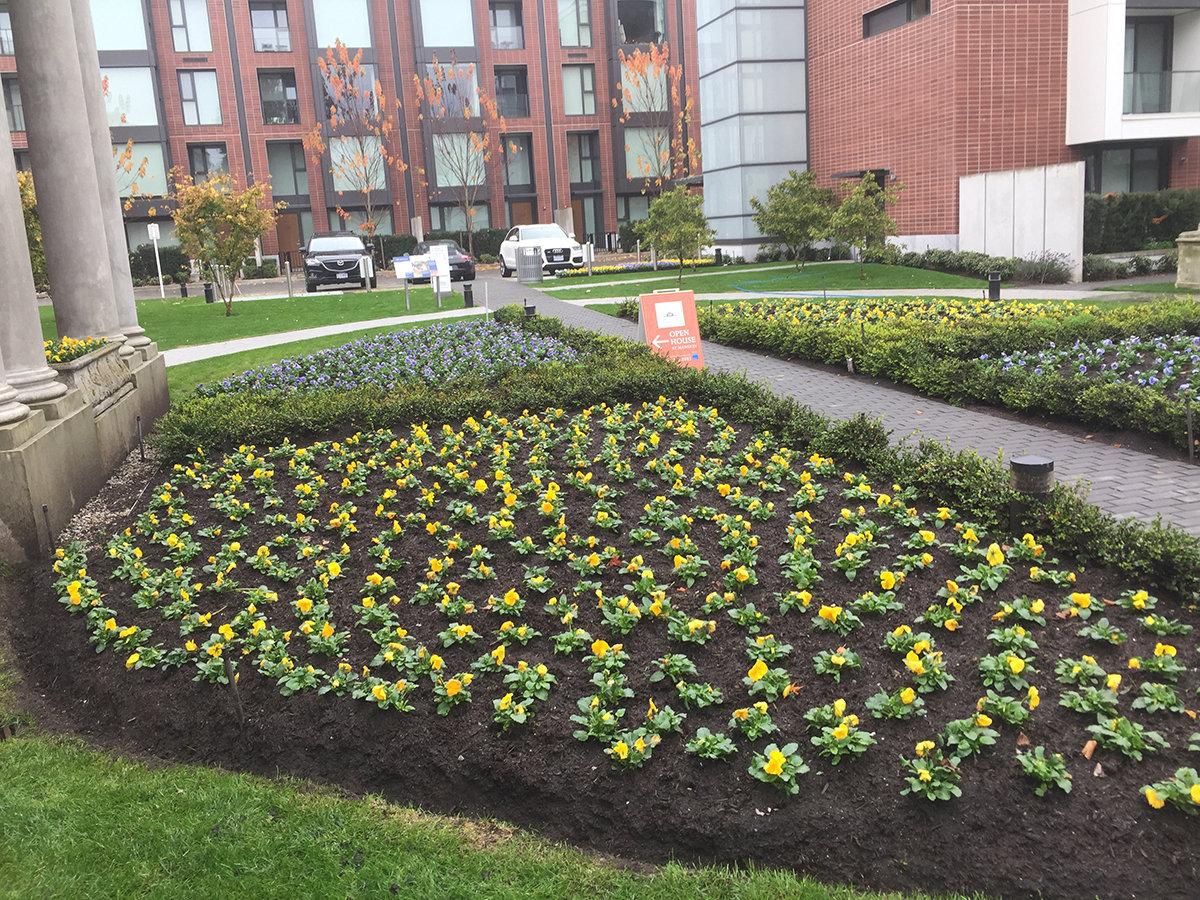 Shannon Wall Centre Garden!