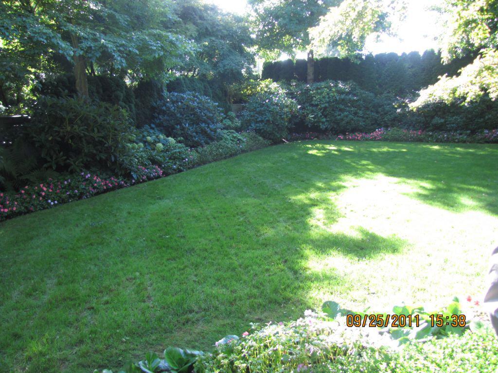 Kingswood Garden!