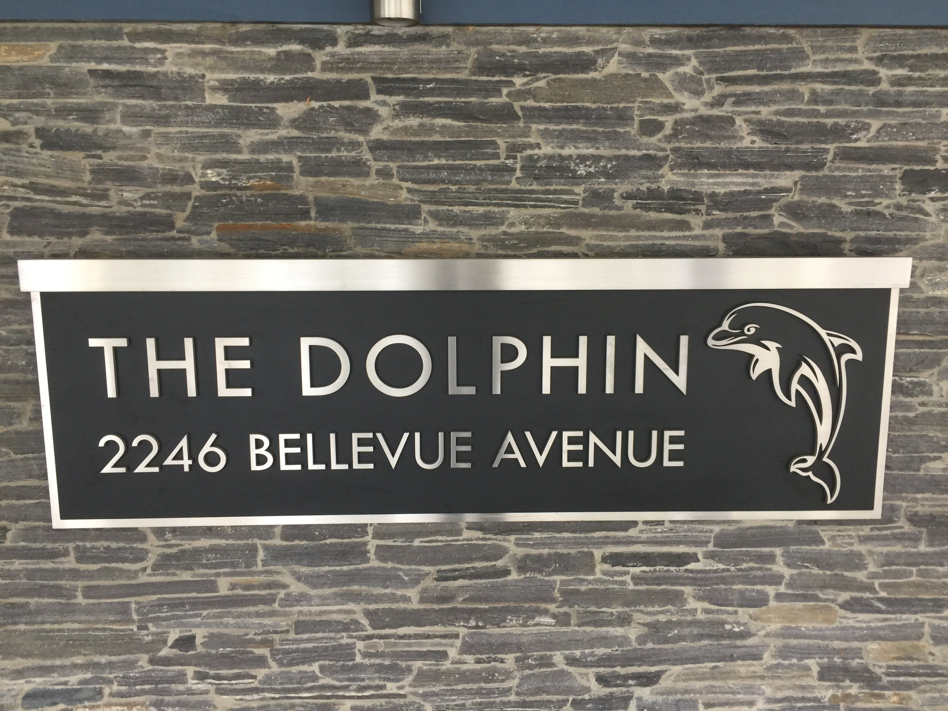 The Dolphin!